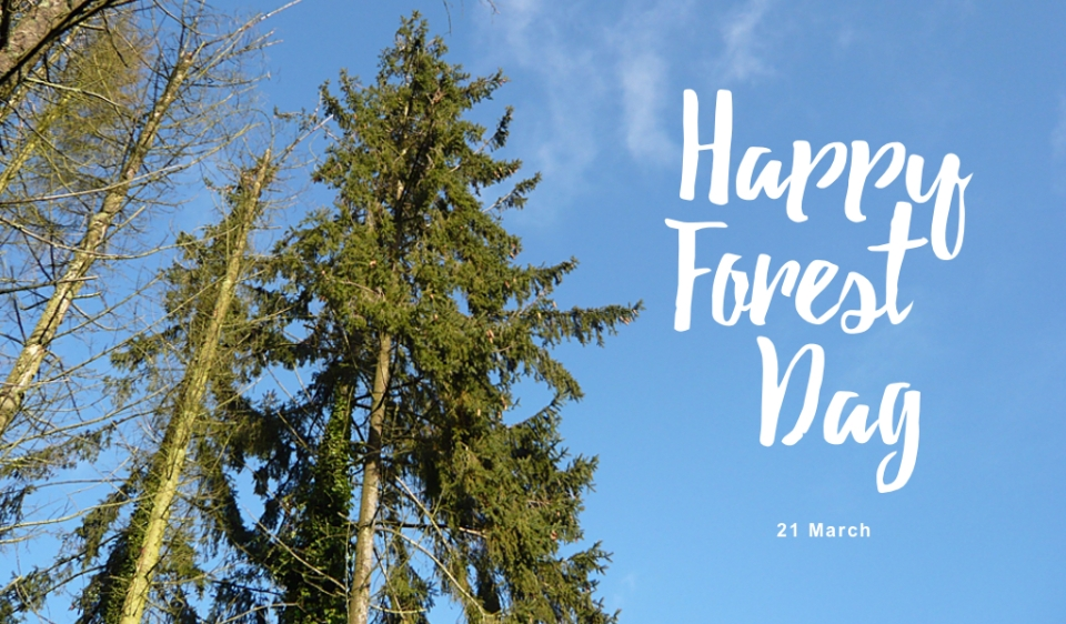 Forest Dag_21maart
